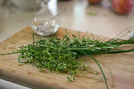 herbs_on_cutting_board