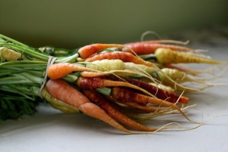 tri_colored_carrots_from_local_roots_market