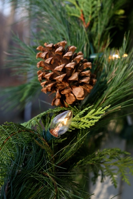 pinecone_and_christmas_lights