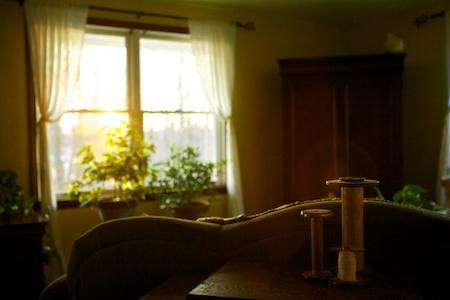 sunlight in living room 2
