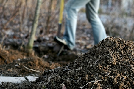 digging in the soil