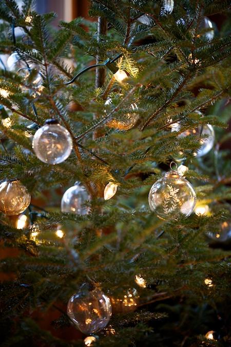 Christmas Tree 2013 2