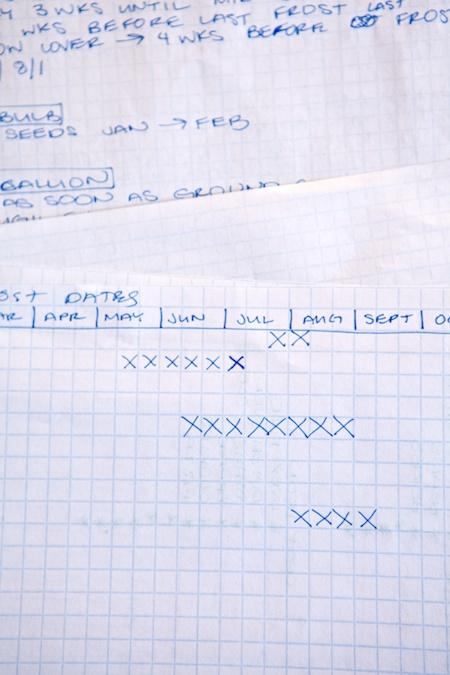 graph paper 2