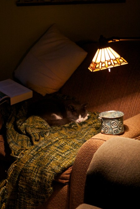 long winters nap