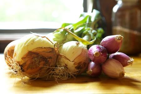 fresh onions 1