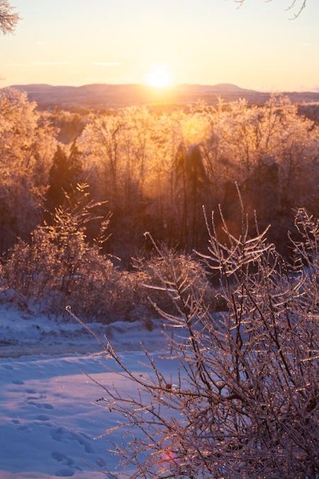 Sunny winter morning 1