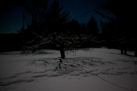 moon 2 (1)