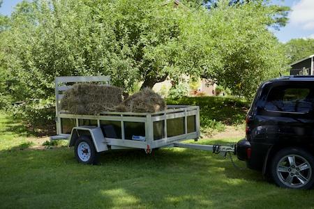 mulch hay 3