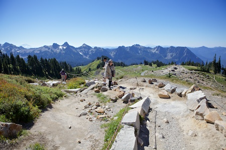 Mt Rainier 3