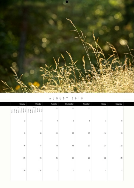 calendar 7