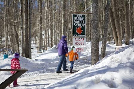 Maine Maple Sunday 1