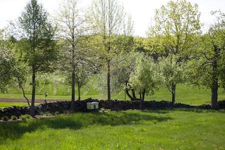 Fieldstone Gardens 1