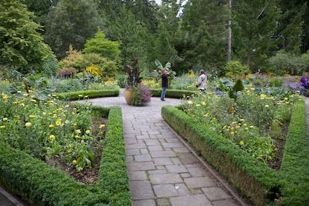 Heronswood formal garden 5
