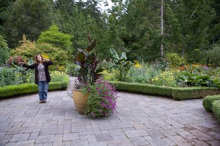 Heronswood formal garden 9