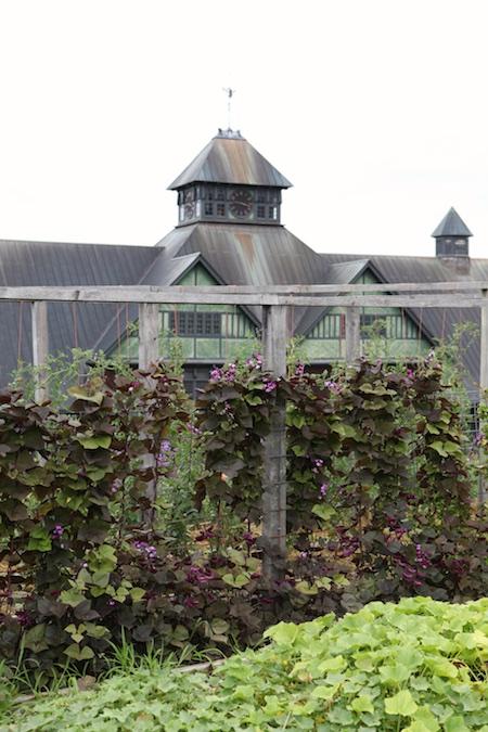 shelburne farms edible gardens 4