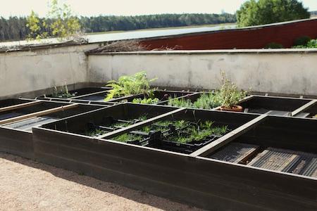 lacko-slatt-upper-garden-21