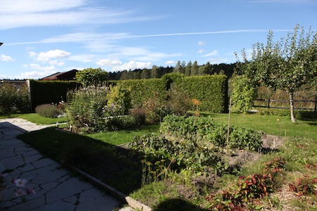 swedish-community-garden-plot-6
