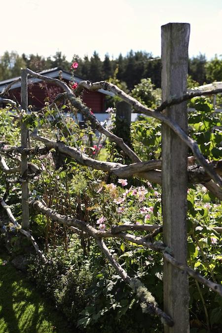 swedish_community_garden-3