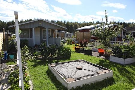 swedish_community_garden_2-2