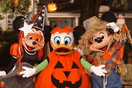 Discount Mickey's Not So Scary Halloween Party 2009 Tickets
