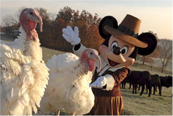 Disney Pic of the day – Turkey Time