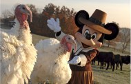 Disney Pic of the day - Turkey Time