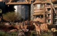 Disney Resort Spotlight: Disney's Animal Kingdom Lodge