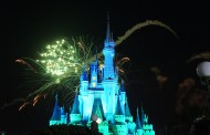 A Disney Year in Review 2013
