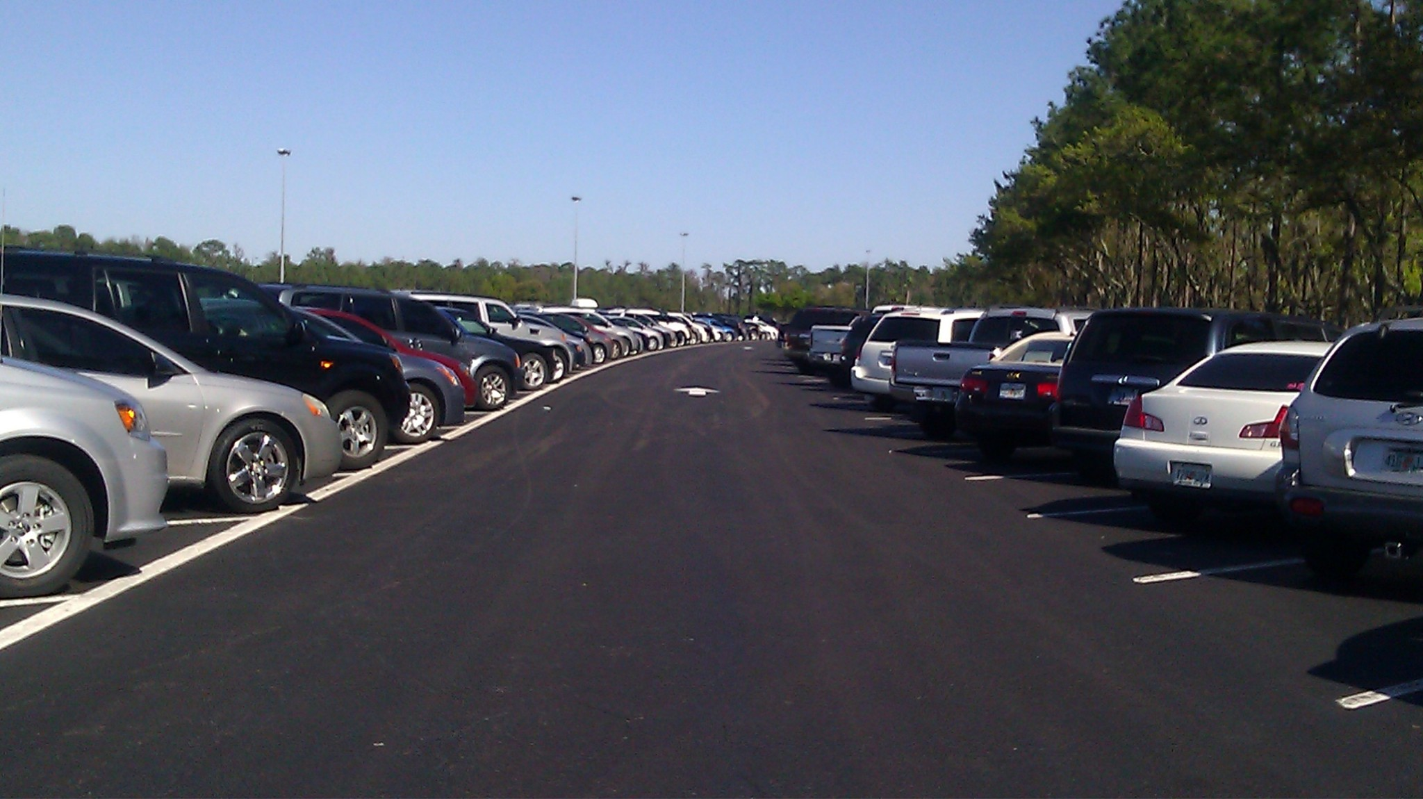 Walt Disney World Parking Rates Have Increased