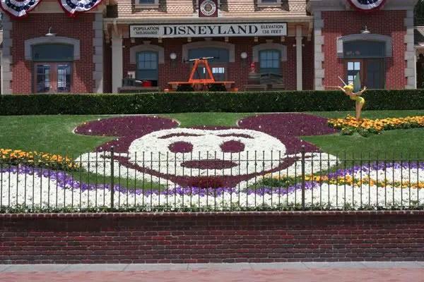 Man arrested for selling fake Disneyland tickets