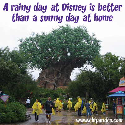 Disney Quick Tips – Check the Weather Before You Leave Home