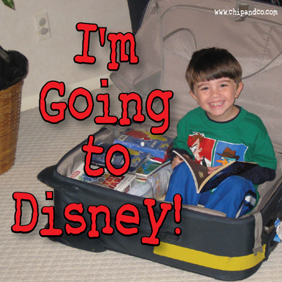 Top 10 Overlooked Items to Pack for your Disney Vacation