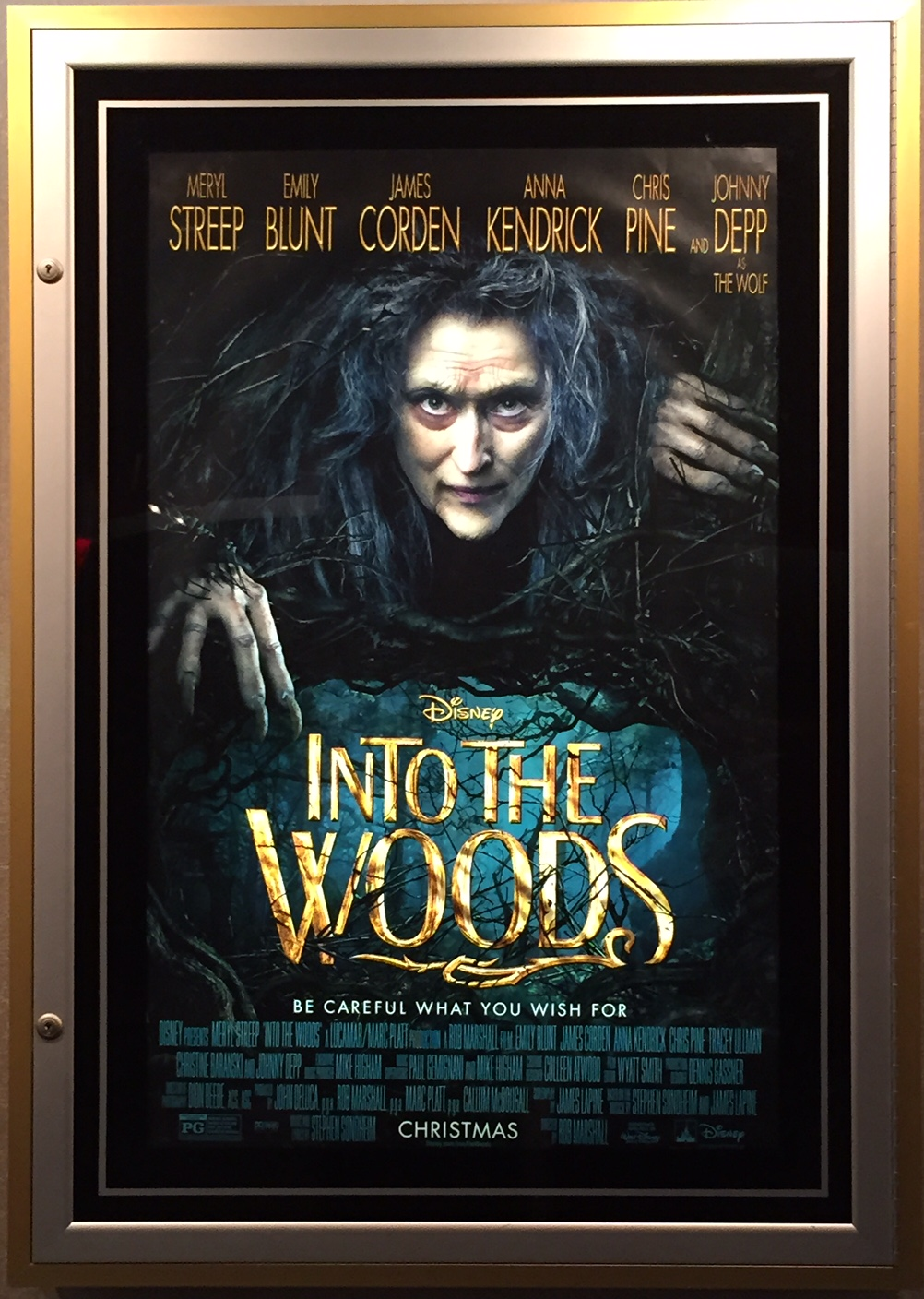 A Glimpse INTO THE WOODS…