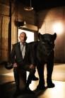 """THE JUNGLE BOOK - Bagheera is a sleek panther who feels it's his duty to help the man-cub depart with dignity when it's time for him to leave his jungle home. """"Bagheera is Mowgli's adoptive parent,"""" says Ben Kingsley, who lends his voice to Bagheera. """"His role in Mowgli's life is to educate, to protect and to guide. My Bagheera was military—he's probably a colonel. He is instantly recognizable by the way he talks, how he acts and what his ethical code is."""" Photo by: Sarah Dunn. ©2016 Disney Enterprises, Inc. All Rights Reserved."""