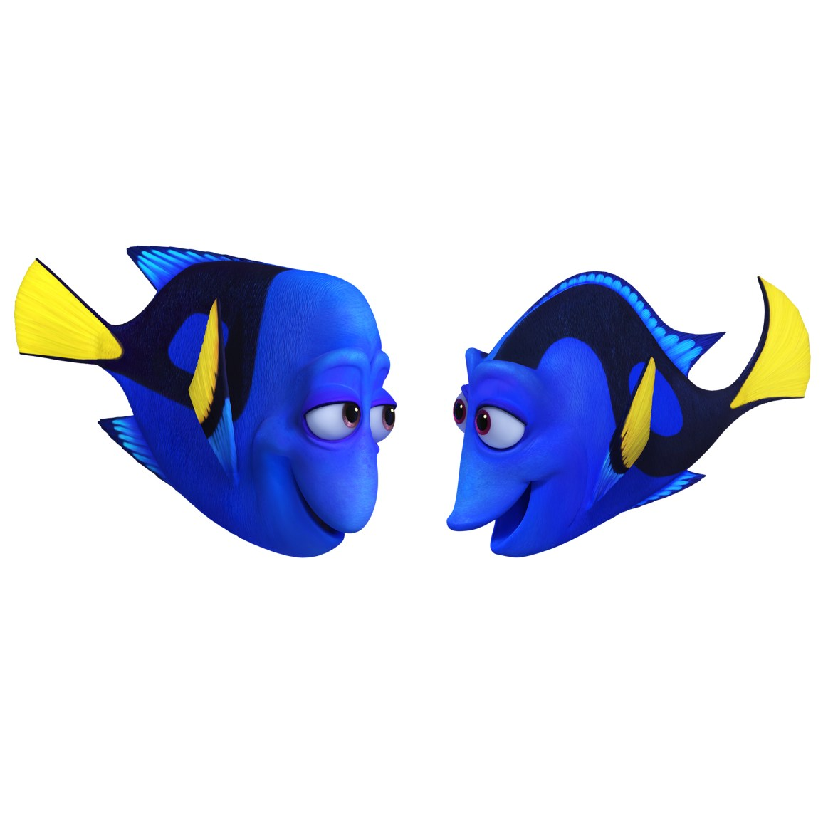 """Full List of """"Finding Dory"""" Cast & Characters Revealed!"""