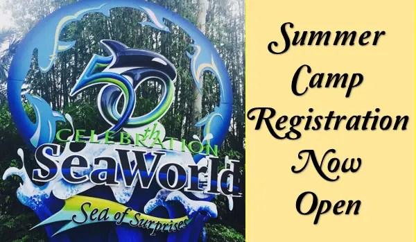 SeaWorld Camps Make a Splash this Summer