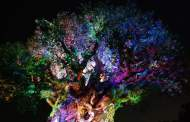Tree of Life Awakens as Darkness Descends Upon Disney's Animal Kingdom