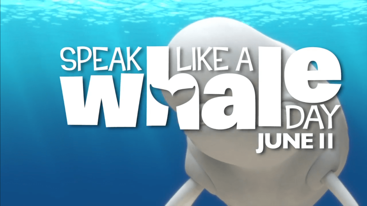 How Fans Can Take Part in Finding Dory's #SpeakLikeAWhaleDay