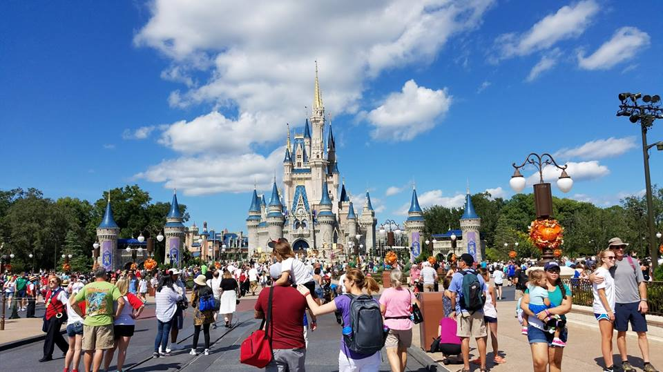 Front of Theme Park Delivery is no Longer Offered by Shop Disney Parks App