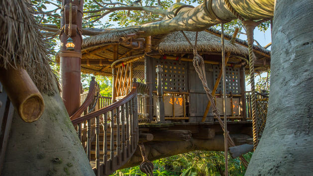 Re-Opening of Swiss Family Robinson Treehouse Delayed