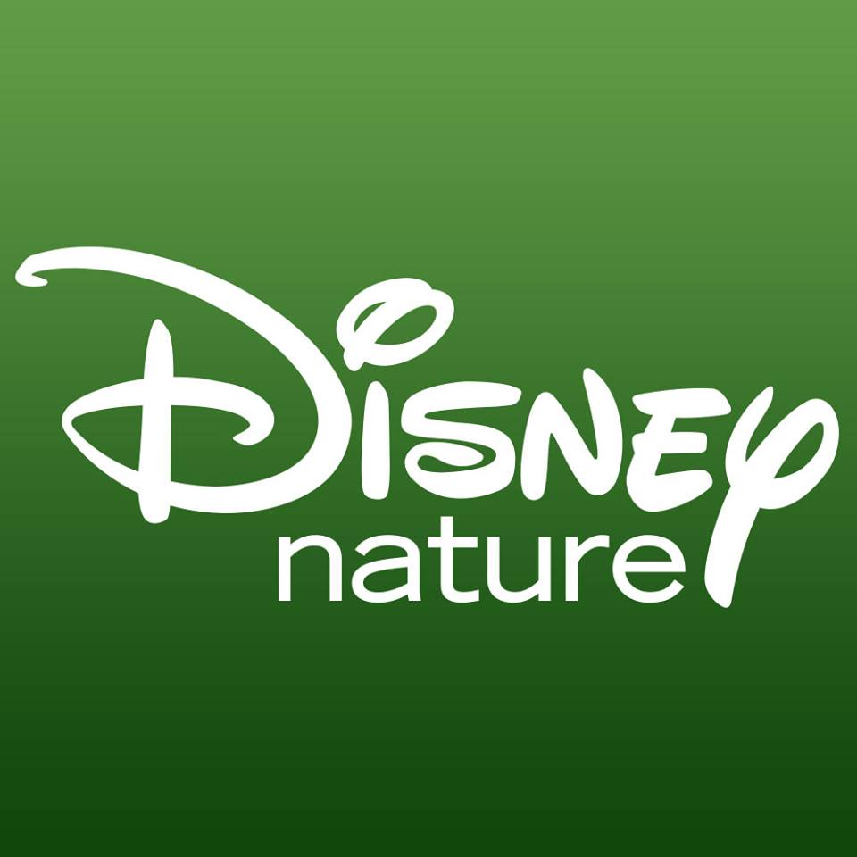 Disneynature's GROWING UP WILD on Digital HD and VOD December 6th