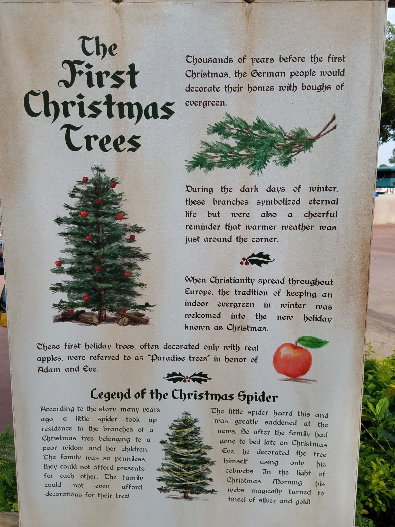 Real History Of Christmas.Epcot S Alpine Haus Showcases The Story Of The Christmas Tree
