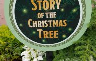 Epcot's Alpine Haus Showcases The Story Of The Christmas Tree
