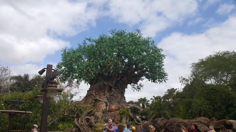 New Meet and Greet Location for Tarzan at Disney's Animal Kingdom Park