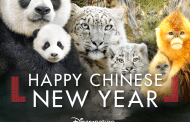 """Receive A Special Rate When Bringing Groups Of 20 Or More For DisneyNature's """"Born In China"""""""