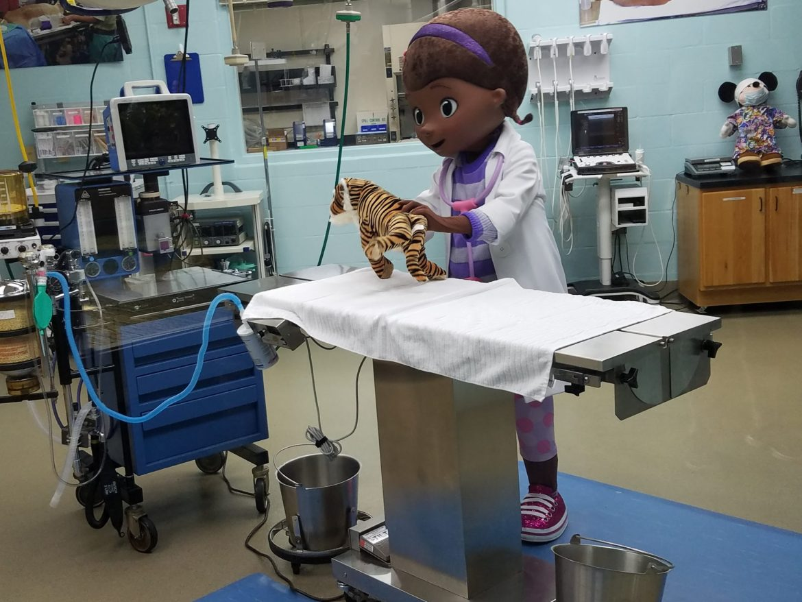 New Doc McStuffins Character Meet in Animal Kingdom's Conservation Station