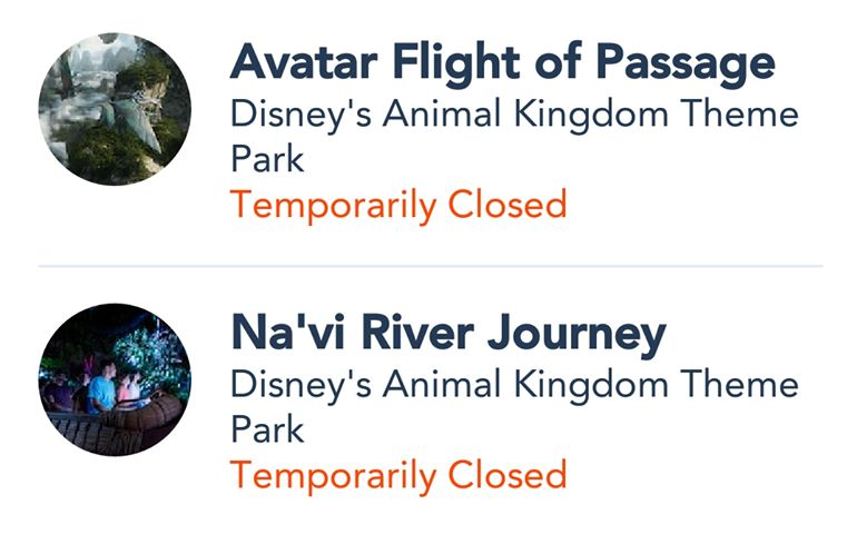 Avatar Flight of Passage and Na'vi River Journey Have Been Evacuated For A Second Time Today