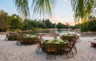 Dine Alongside Dolphins During Discovery Cove's Paradise Nights