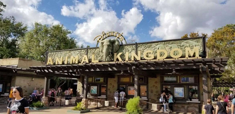 Animal Kingdom Rolls Out New Stroller Parking Pilot Program