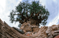 New In-Park Ticket Purchasing Options Being Trailed at Animal Kingdom Theme Park